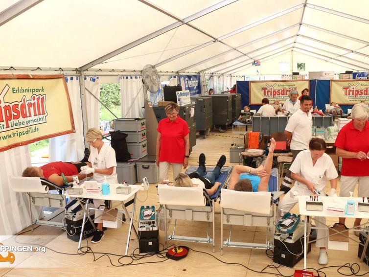 DRK sucht Blutspender in Frickingen
